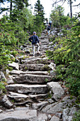 Hikers on the Himmelsleiter, the summer path to the summit of Lusen in the Bavarian Forest National Park, Lower Bavaria, Bavaria, Germany, Europe