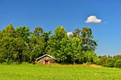 Tarditioneller Erdkeller am Rande eines Waldes, bei Smålandsstenar, Jönköpings Län, Schweden