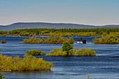 Einsame Hütte und Bäume stehen im überfluteten Torneälv, Grenze Schweden-Finnland, Norrbottens Län, Schweden