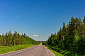 Endless road through the vastness of Lapland, near Narken, Norrbottens Län, Sweden