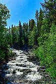 Eine Stromschnelle im Österdalälven, umgeben von Wald, Älvdalen, Dalarna, Schweden
