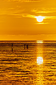 Sunset at the North Sea, Dorum, Lower Saxony, Germany