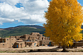 Trees with fall colors at the Taos Pueblo which is the only living Native American community designated both a World Heritage Site by UNESCO and a National Historic Landmark in Taos, New Mexico, USA.