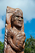 A Maori pole at the historic Meretoto (Ship Cove) in Queen Charlotte Sound in the Marlborough Sounds of the South Island, which was Captain James Cooks favorite New Zealand base during his three voyages of exploration.