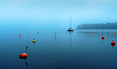 Buoy field on Lake Starnberg in winter, Tutzing, Bavaria, Germany