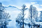Blick auf die Loisach im Winter mit bereiften Bäumen, Bayern, Deutschland