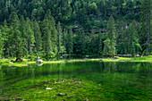 Idyllische Lage der Gosaulacke, Mittlerer See der Gosauseen, Salzkammergut, Oberösterreich, Österreich