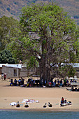Malawi; Northern Region; Malawi lake; Usisya; Stopping point of the Ilala; fishing boats are on the beach; Passengers wait for transport to the Ilala under a large, shady tree