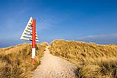 Path through the dunes in the Ellenbogen nature reserve near List, Sylt, Schleswig-Holstein, Germany