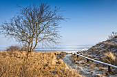 Frozen mudflats near Keitum, Sylt, Schleswig-Holstein, Germany