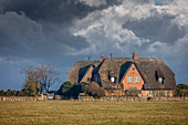Thatched roof yards outside Kampen, Sylt, Schleswig-Holstein, Germany
