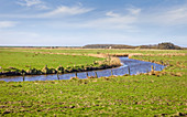 The Sii River near Keitum, Sylt, Schleswig-Holstein, Germany