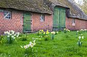 Historic farm in Tinnum, Sylt, Schleswig-Holstein, Germany