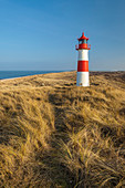 Path on the dune to the List-Ost lighthouse on the Ellenbogen Peninsula, Sylt, Schleswig-Holstein, Germany