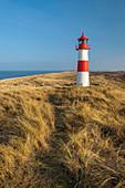 Weg auf der Düne zum Leuchtturm List-Ost auf der Ellenbogen-Halbinsel, Sylt, Schleswig-Holstein, Deutschland