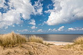 Path through the dunes on the Rote Kliff in Kampen, Sylt, Schleswig-Holstein, Germany