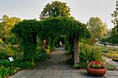 Pergola, Friendship Island, Potsdam, Brandenburg State, Germany