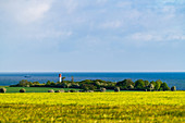 View over fields to the lighthouse in Heiligenhafen, Baltic Sea, Ostholstein, Schleswig-Holstein, Germany