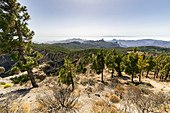 """View from the """"Pico de las Nieves"""" viewpoint in the high mountains of Gran Canaria, Spain"""