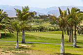 Golf course in the south of Gran Canaria, Spain
