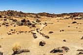 "Orange-yellow sandy landscape ""Minas de San Jose"" in El Teide National Park, Tenerife, Spain"