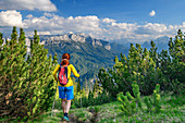 Woman hiking goes through Latschen, Reiteralm in the Berchtesgaden Alps in the background, from Ristfeuchthorn, Chiemgau Alps, Chiemgau, Upper Bavaria, Bavaria, Germany