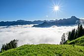 Nebelmeer über Oberstdorfer Talboden, Nebelhorn und Höfats im Hintergrund, am Himmelschrofen, Allgäuer Alpen, Allgäu, Bayern, Deutschland