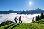 Mann und Frau beim Wandern steigen über Wiese auf, Nebelhorn und Höfats im Hintergrund, am Himmelschrofen, Allgäuer Alpen, Allgäu, Bayern, Deutschland