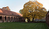 Autumn at the Chorin monastery in Barnim in Brandenburg
