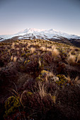 Sunset at Mount Ruapehu in the Taupo District, Tongariro National Park, New Zealand.