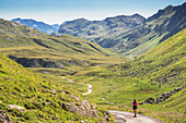 The green Valley of Alpe Verbella, Gaschurn, Bludenz, Vorarlberg, Austria, Europe