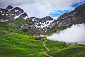 Fog is about to wind up the pasture of Meglisalp ,Canton of Appenzell, Alpstein, Switzerland, Europe