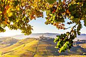 Village of Castiglione Falletto between autumn colors. Barolo wine region, Langhe, Piedmont, Italy, Europe.