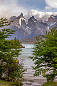 Chile,Patagonia,Magallanes and Chilean Antarctica Region,Ultima Esperanza Province,Torres del Paine National Park,the iconic Paine Horns