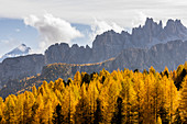 Italy,Veneto,Belluno district,the Croda da Lago group surrounded by larch trees in autumnal garment