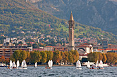 Sail boats in front of Lecco, Lecco province, lombardy, north italy, italy