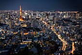 Tokyo by night with tokyo tower, Tokyo, Japan