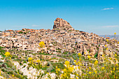 Ancient fortress of Uchisar with spring yellow flowers. Cappadocia, Kaisery district, Anatolia, Turkey.