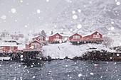 Die roten Häuser von Å, dem letzten Dorf der Lofoten bei Schneefall, Å, Lofoten, Norwegen, Skandinavien, Europa