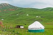 Yurts and horses landscape near Gulca village. Chyiyrchyk pass, Kyrgyzistan, Central Asia.