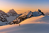 Ski touring at Punta degli Spiriti, Geister spitze with the sunrise light and Gran Zebrù, Konig spitze in the background. Stelvio pass, Stilfser joch, Bormio, SOndrio district, Alps, Lombardy, Italy, Europe.