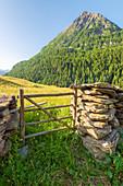 Chiareggio, Valmalenco, Valtellina, Province of Sondrio, Lombardy, Italian alps, Italy