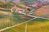 Rows of orange, yellow and green vineyards on the hill in autumn in Piedmont, Northern Italy, Europe,