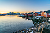 Typical fishermen red houses on the sea at dawn in winter. Svolvaer, Nordland county, Northern Norway region, Norway.