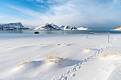 Volley net on Haukland Beach in winter, with mountains in the background. Leknes, Nordland county, Northern Norway, Norway.