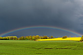 Rainbow after a thunderstorm, Rosenhof Ostholstein; Schleswig-Holstein, Germany