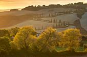 Podere La Fonte, Località La Fonte, Radicondoli, Siena, Toskana, Italien, Südeuropa