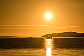 Angler with boats in the midnight sun in the fjord, Lauvsnes, Namdalen, Trondelag, Norway