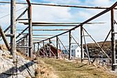 Trockenfischgestelle auf der Insel Nordöyan, Fischerdorf, Folda, Namdalen, Tröndelag, Norwegen