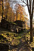 Autumn at Mulini di Piero, Curiglia con Monteviasco, Veddasca valley, Varese district, Lombardy, Italy.